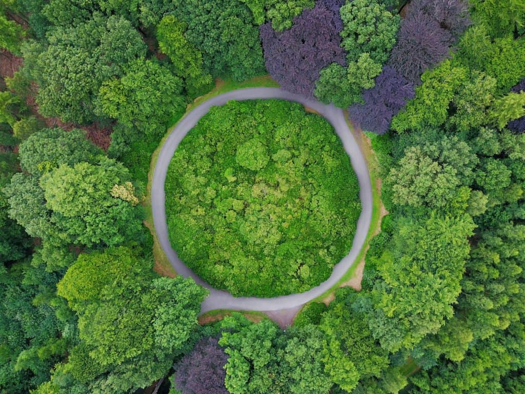 Green Roundabout